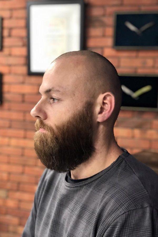 brody (52)